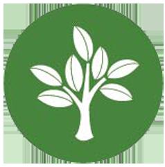 Environment Program